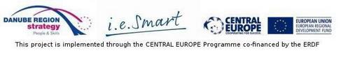 i.e_smart_-smarttal (1)